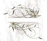 Floral design. Vector illustration Royalty Free Stock Images