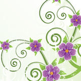 Floral design. Vector illustration Stock Photo
