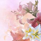Floral design vintage Stock Image