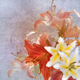 Floral design vintage Royalty Free Stock Images