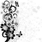 Floral design5 Stock Image