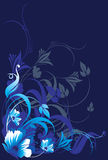 Floral designs. With flowers and swirls on blue background Royalty Free Stock Image