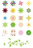 Floral designs. Amazing floral patterns & Decorative floral elements Royalty Free Stock Photo