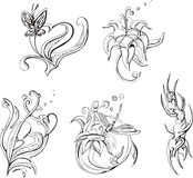 Floral designs and stylized hearts. Set of floral designs and stylized hearts. Vector Illustrations Stock Photography