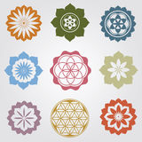 Floral mini mandalas Stock Photography