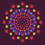 Floral mandalas from tulips Royalty Free Stock Photo