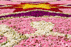 Floral Display, Valletta, Malta. The annual floral display in St George Square, Valletta, Malta. 9th May 2014 Stock Image