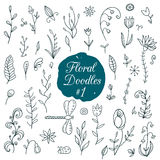 Floral doodle set Stock Image