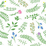 Floral doodle vector seamless pattern on white background. Royalty Free Stock Images