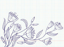 Floral doodles Royalty Free Stock Image