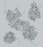 Floral drawing contour vector elements Royalty Free Stock Photos