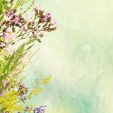 Floral easter background Royalty Free Stock Photos