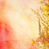 Floral easter background Stock Photo
