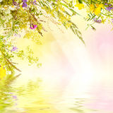 Floral easter background Royalty Free Stock Photo