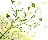 Floral ecology background illustration royalty free stock photos