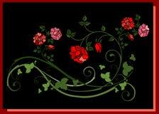 Floral element Stock Photos