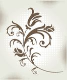 Floral element Royalty Free Stock Photos