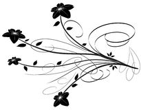 Floral Element. Black and white floral element royalty free illustration