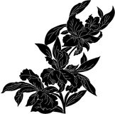 Floral element. Black abstract floral element. vector illustration Stock Photography