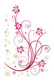 Floral element Stock Photography
