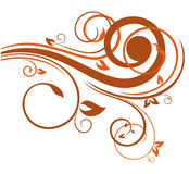 Floral element for design Stock Image