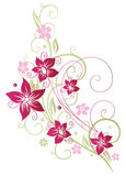 Floral element, summer Royalty Free Stock Photo