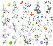 Free Floral  Elements Royalty Free Stock Images - 18101069