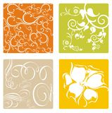 Floral elements. Collection of floral elements in vector Royalty Free Stock Images