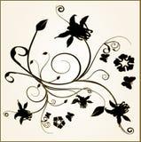 Floral elements. Design floral vector frame elements vector illustration