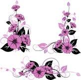 Floral elements. Nice floral elements. Vector illustration Stock Image