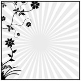 Floral elements Black Royalty Free Stock Photography