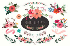 Floral elements collection Royalty Free Stock Image