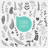 Floral elements. Collection of spring flowers, leaves, dandelion. Floral elements. Hand drawn design elements. Collection of spring flowers, leaves, dandelion Stock Photo