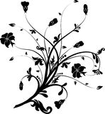 Floral elements for design,  Stock Photography