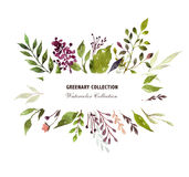 Floral elements in green vector illustration