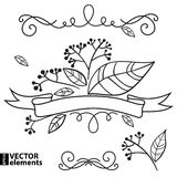 Floral elements, leaves with ribbon for text Stock Photos