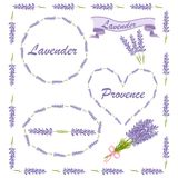 Floral elements for logo or decor. Lavender icons set: flowers, calligraphy, floral elements Stock Photos