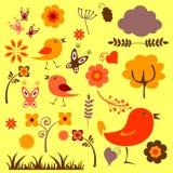 Floral elements set Royalty Free Stock Photos