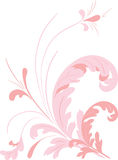 Floral elements. Vector Stock Image