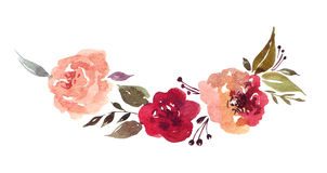 Floral elements royalty free illustration
