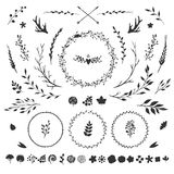 Floral elements  on white. Vector set with rustic floral elements  on white: flowers, leaves, berries, branches and other hand drawn decorative elements Royalty Free Stock Image