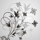 Floral ellements Royalty Free Stock Photography