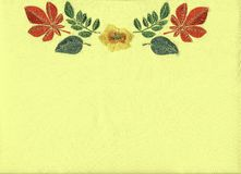 Floral embroidery. Royalty Free Stock Photos