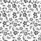 Floral Embroidery seamless pattern with isolated flowers for you Stock Photography
