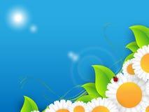 Floral environmental vector frame Stock Photography