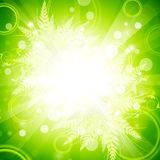 Floral explosion background Stock Photos