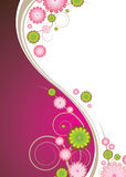 Floral explosion pink royalty free illustration