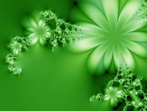 Floral fantasy. Green flowers on the green background Stock Images