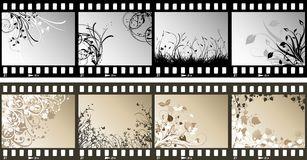 Floral film strips Royalty Free Stock Photography