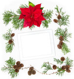 Floral Flat lay background Mock up tablet pc Red Christmas flowe Royalty Free Stock Photography